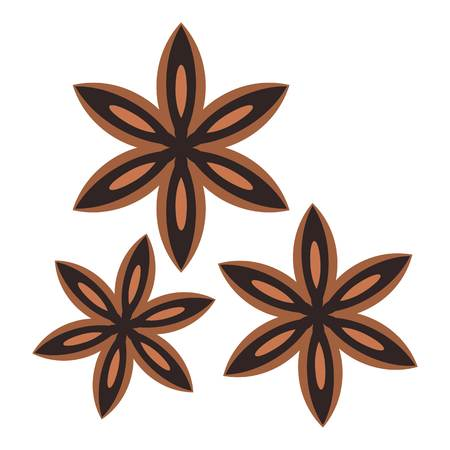 Star anise spice icon isolated