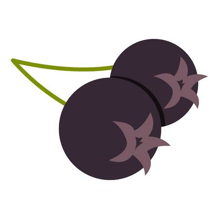 ashberry: Fresh chokeberry or aronia berry icon flat isolated on white background vector illustration.