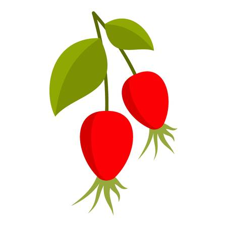 Ripe berries of a dogrose icon flat isolated on white background vector illustration. Illustration