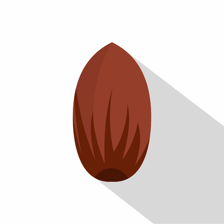 Pecan nut icon. Flat illustration of pecan nut vector icon for web on white background