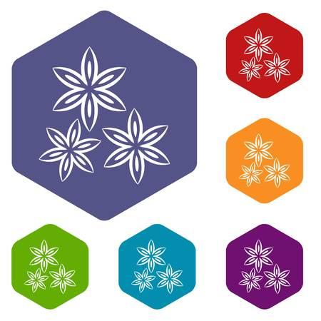 licorice sticks: Star anise icons set hexagon