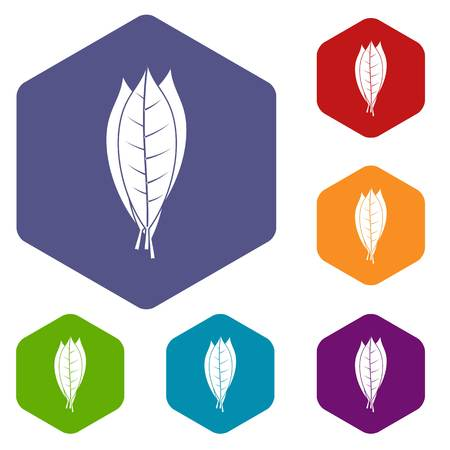Culinary bay leaves icons set hexagon