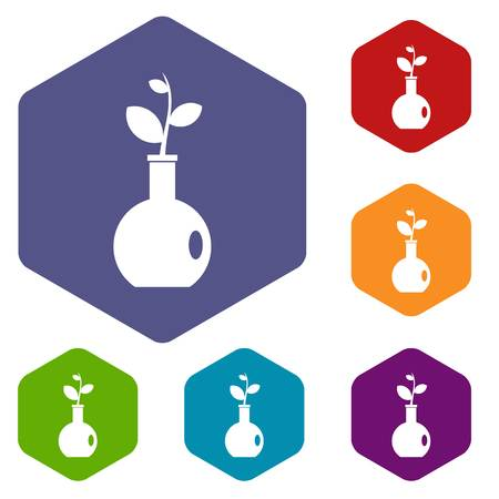 Plant in a vase icons set hexagon