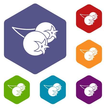 Chokeberry or aronia berry icons set hexagon