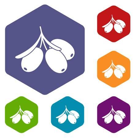 Sea buckthorn branch icons set hexagon