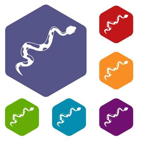 Creeping snake icons set hexagon