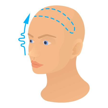 Forehead lift icon. Cartoon illustration of forehead lift vector icon for web