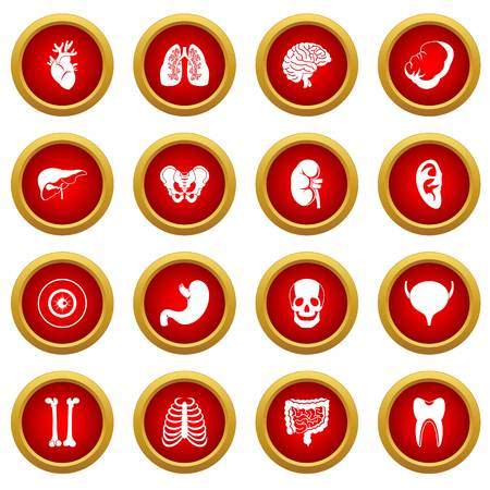 Human organs icon red circle set isolated on white background