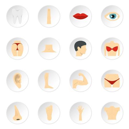 Partes del cuerpo set iconos planos Ilustración de vector