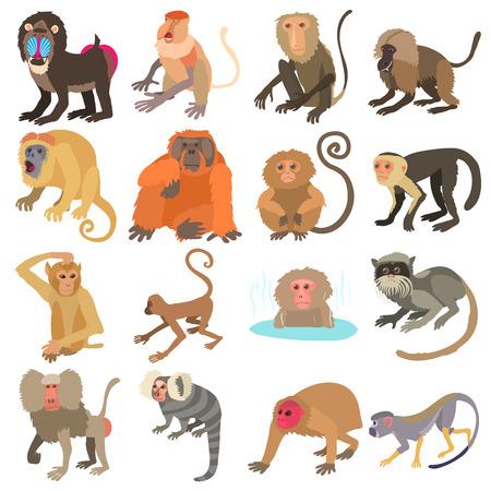 Monkeys types icons set. Cartoon illustration of 16 monkeys types vector icons for web