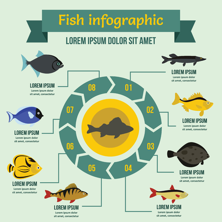 Fish infographic banner concept. Flat illustration of fish infographic vector poster concept for web Illustration