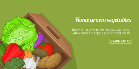 Home grown vegetables banner horizaontal concept. Cartoon illustration of home grown vegetables banner horizontal vector concept for web Illustration