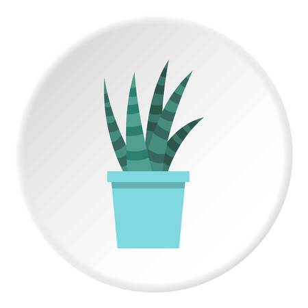 spiny: Mammillaria bocasana in bloom icon in flat circle isolated on white vector illustration for web