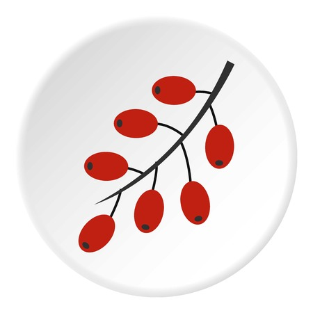 Red ripe barberries icon circle