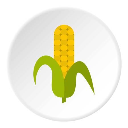 Ripe corncob icon circle