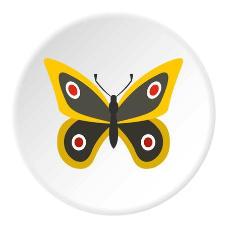 Little butterfly icon circle