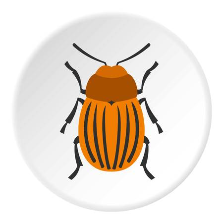 six objects: Colorado beetle icon circle