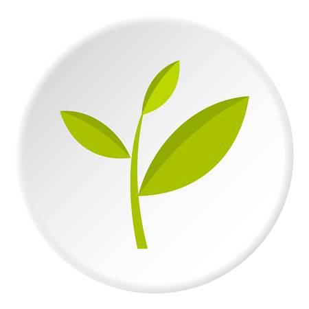 Tea plant icon circle Illustration
