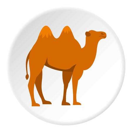 hardy: Camel icon circle