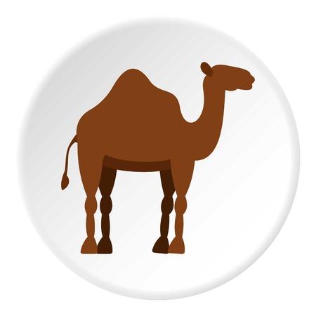 Dromedary camel icon circle Illustration