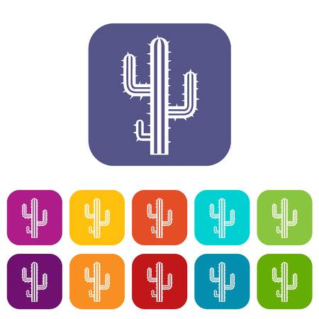 Cactus icons set vector illustration in flat style In colors red, blue, green and other