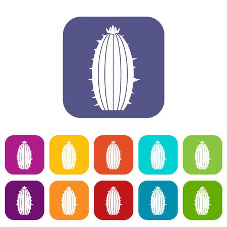 Mammillaria bocasana icons set vector illustration in flat style In colors red, blue, green and other