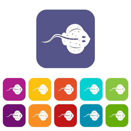 Stingray fish icons set vector illustration in flat style In colors red, blue, green and other