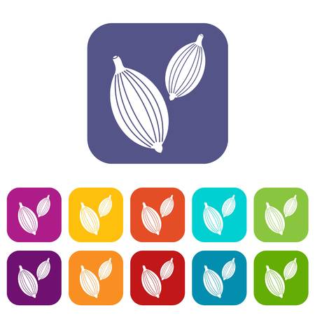 Cardamom pods icons set vector illustration in flat style In colors red, blue, green and other Illustration