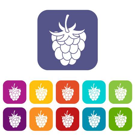 Raspberry or blackberry icons set vector illustration in flat style In colors red, blue, green and other