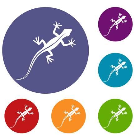 vertebrate: Lizard icons set