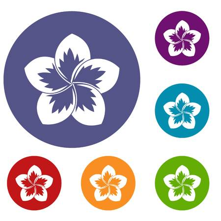 Frangipani flower icons set in flat circle reb, blue and green color for web Illustration