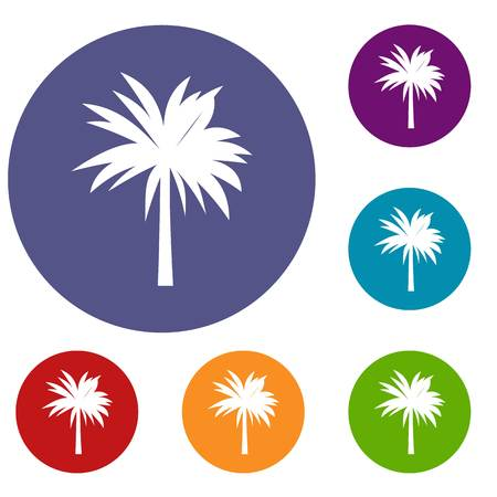 Palm icons set in flat circle reb, blue and green color for web