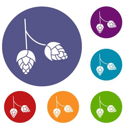 ferment: Branch of hops icons set in flat circle reb, blue and green color for web