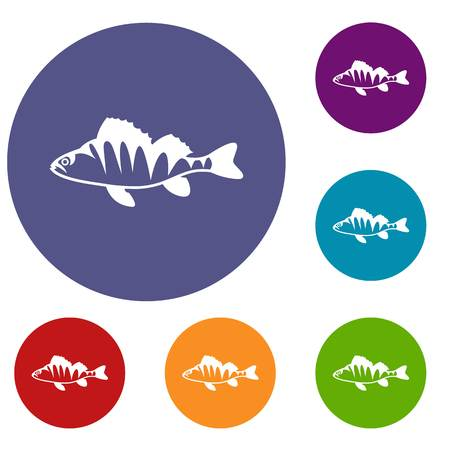 freshwater fish: European perch, Perca fluviatilis icons set in flat circle reb, blue and green color for web