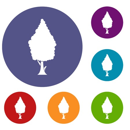 cypress: Cypress icons set in flat circle reb, blue and green color for web Illustration