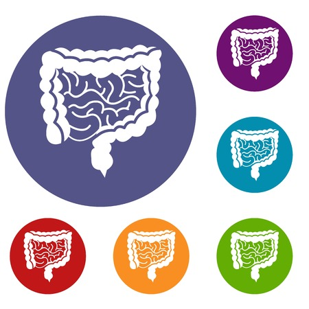 alimentary: Intestines icons set