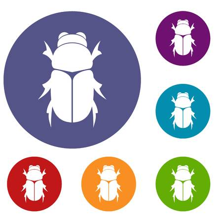 Chafer beetle icons set
