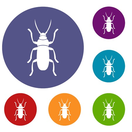 entomology: Beetle bug icons set