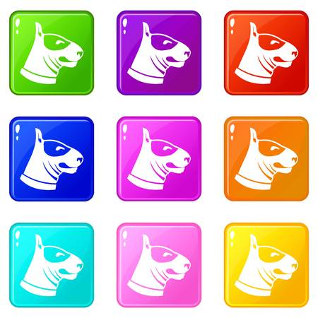 Bull terrier dog icons 9 set