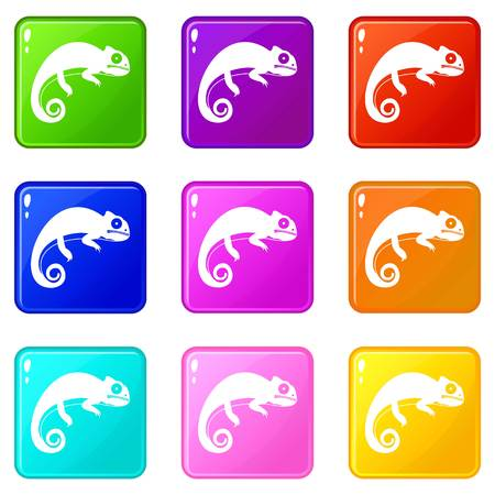 scale: Chameleon icons 9 set