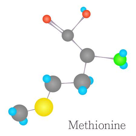 Methionine 3D molecule chemical science