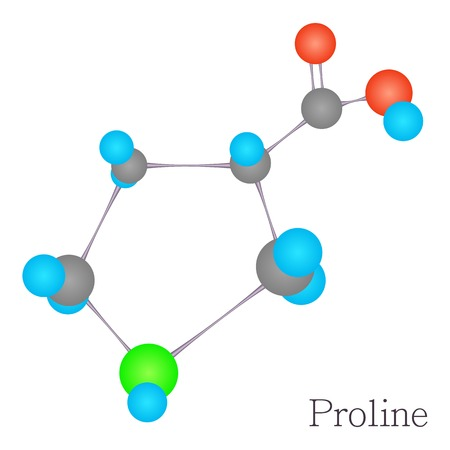 proline: Proline 3D molecule chemical science
