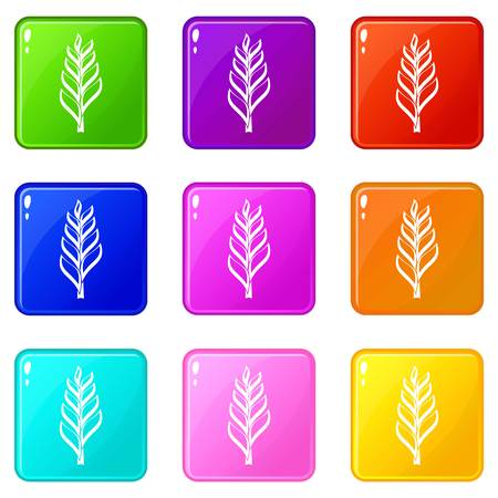 grain: One spica icons 9 set