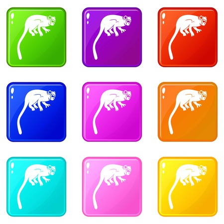 Marmoset monkey icons of 9 color set isolated vector illustration