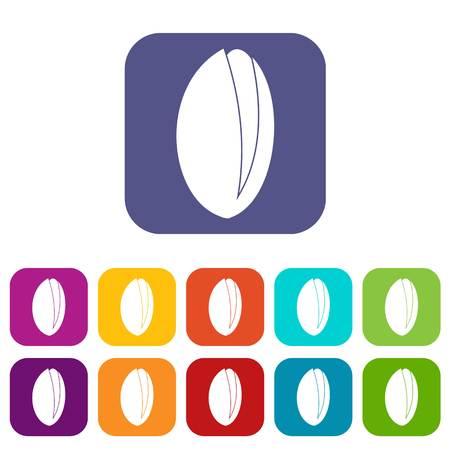 Pistachio nut icons set flat