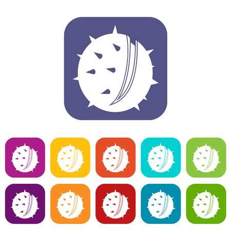 Chestnut icons set flat