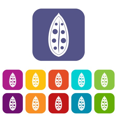Cocoa pod icons set flat