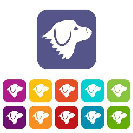 red nose: Retriever dog icons set vector illustration in flat style In colors red, blue, green and other