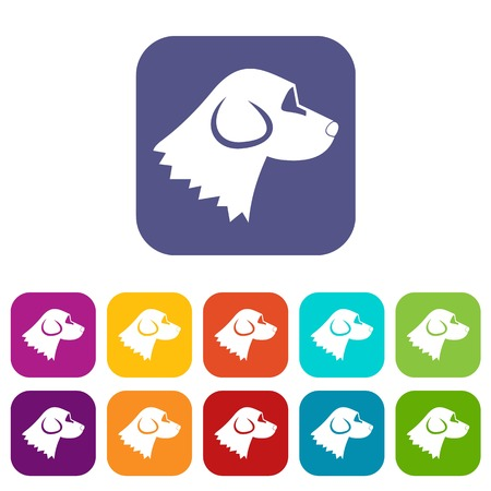 Beagle dog icons set vector illustration in flat style In colors red, blue, green and other