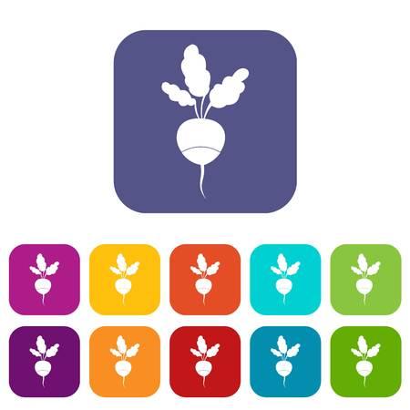 Fresh radish icons set